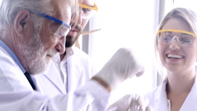 pharmacy : alternative medicine - intellectual property stock videos & royalty-free footage