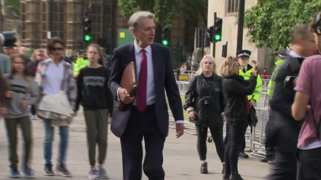philip hammond walking past protesters as he arrives at the houses of parliament - フィリップ ハモンド点の映像素材/bロール