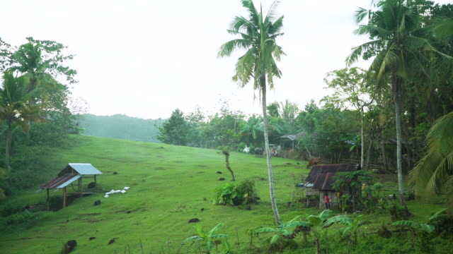 philippines iconic image. hill with houses and palm trees - hut stock videos & royalty-free footage