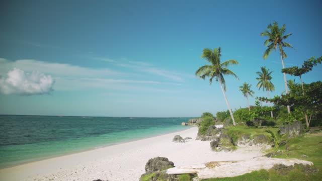 vídeos de stock e filmes b-roll de philippines idyllic beach. paradise beach at bantayan, visayas - árvore tropical