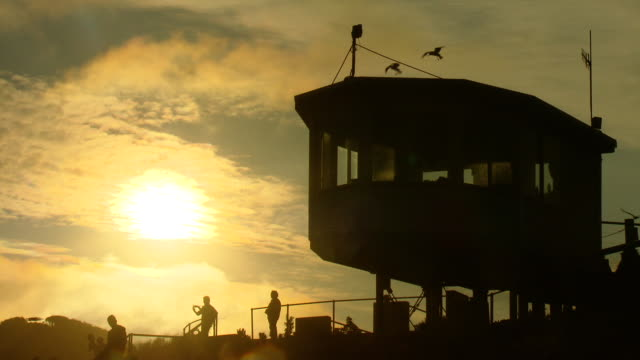 phillip island little penguin viewing deck silhouette against a golden sun set various anonymous tourists stand about - ecoturismo video stock e b–roll