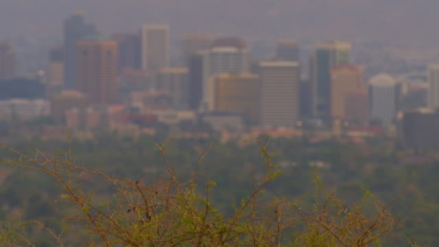 phoenix, arizonacityscape - arizona stock videos & royalty-free footage