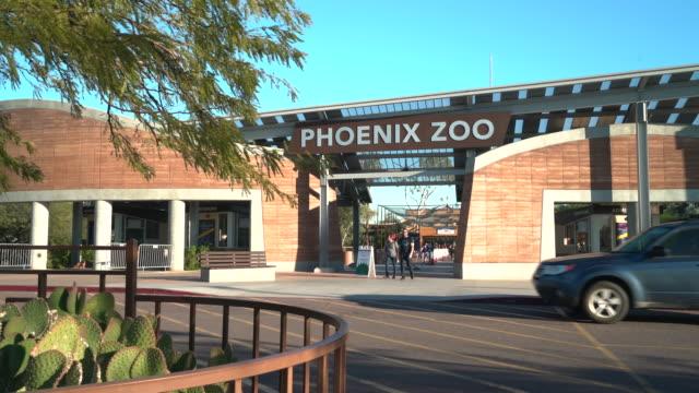vídeos de stock, filmes e b-roll de phoenix zoo - jardim zoológico