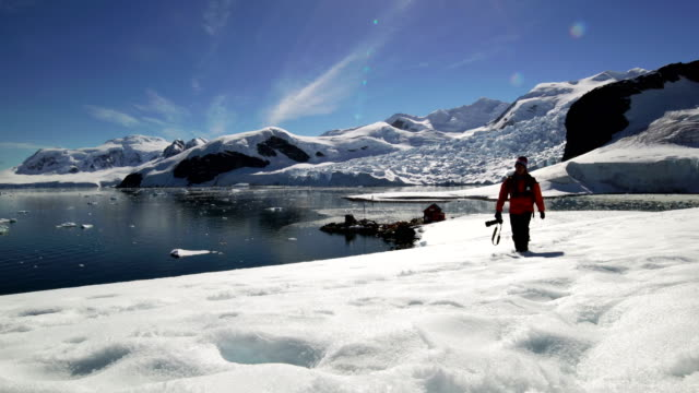 photographer hiking in antarctica - photographer stock videos & royalty-free footage