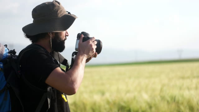 photographer in wheat field - environment stock videos & royalty-free footage