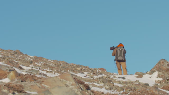 photographer lines up a photo of a mountain sheep - telephoto lens stock videos and b-roll footage