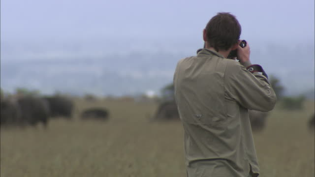 a photographer shoots pictures of savanna animals in kenya. - 写真家点の映像素材/bロール