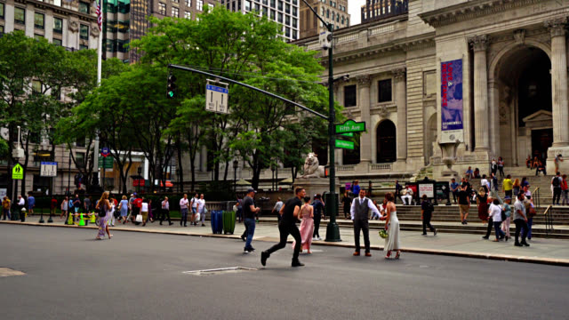 photographer take pictures of newlywed couple. new york public library entrance. park. - bryant park stock videos & royalty-free footage