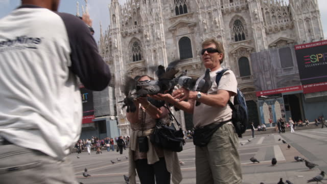 ms photographer taking picture of tourists playing with pigeons, piazza del duomo / milan, italy - piazza del duomo milan stock videos and b-roll footage