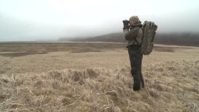 a photographer uses binoculars to scope out a tundra location. - fotograf stock-videos und b-roll-filmmaterial