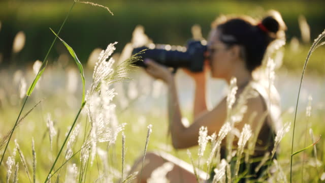 fotograf - digital spegelreflexkamera bildbanksvideor och videomaterial från bakom kulisserna