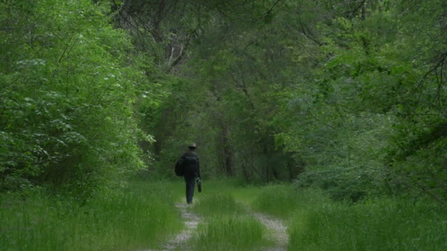photographer walking down path in urban forest with tripod in hand, great trinity forest, dallas, texas - one man only stock videos & royalty-free footage