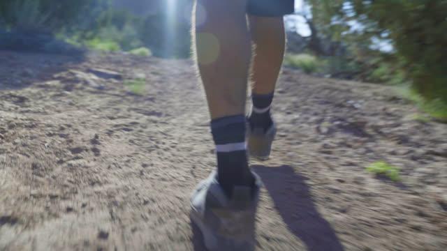 カメラマンがトレイルを歩く - デジタル一眼レフカメラ点の映像素材/bロール