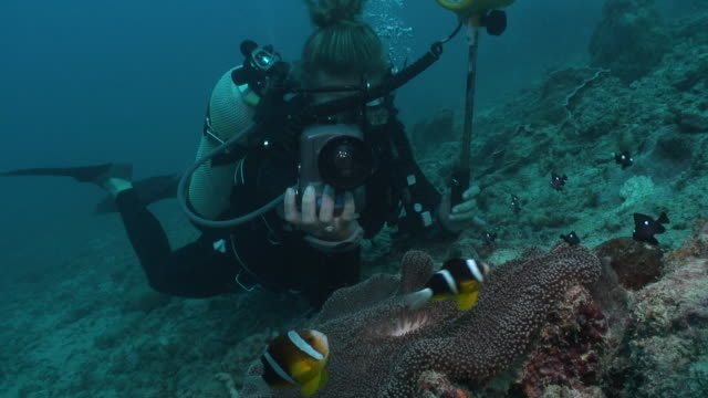 Photographer with Anemonefish