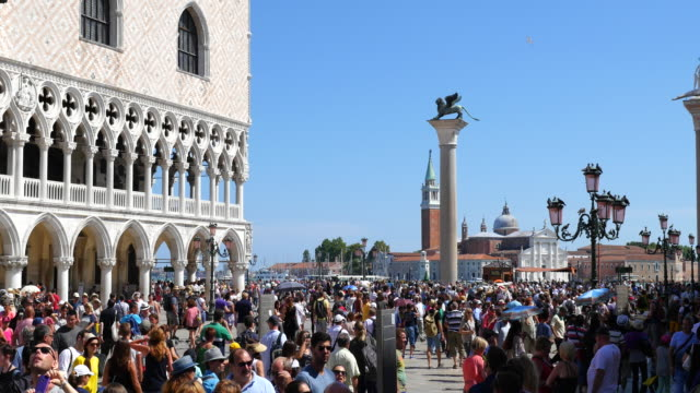 piazza san marco, venice, italy - venice italy stock videos & royalty-free footage