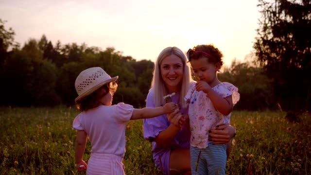 picking flowers with mom on the meadow - picking stock videos & royalty-free footage