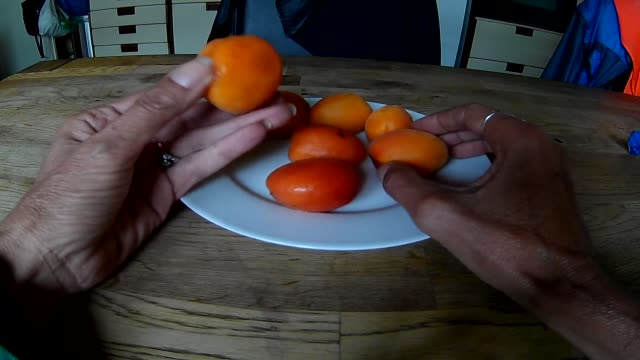 picking fresh small apricots fruit - apricot stock videos & royalty-free footage