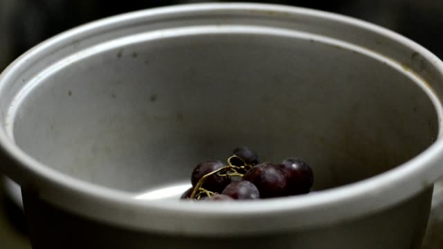 Picking grape into bowl