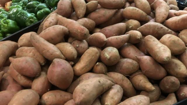 picking up sweet potatoes - sweet potato stock videos & royalty-free footage