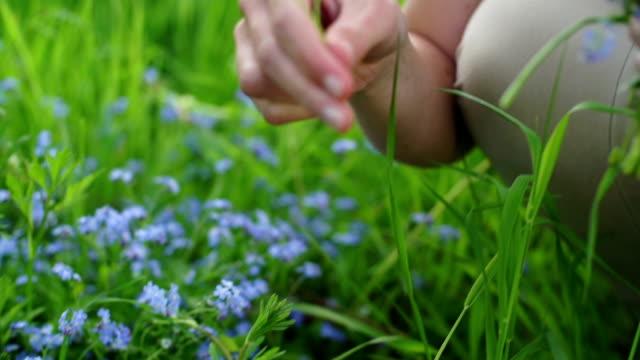 vidéos et rushes de cueillir des fleurs sauvages - cueillir