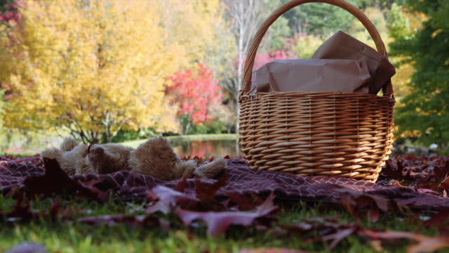 a picnic basket and a teddy bear in autumn at mount macedon, victoria, australia - picnic basket stock videos and b-roll footage