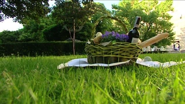 picnic basket on grass - hamper stock videos & royalty-free footage