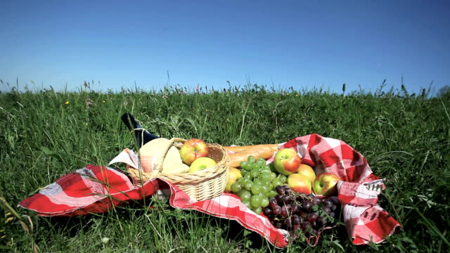 picnic basket on meadow - picnic basket stock videos & royalty-free footage