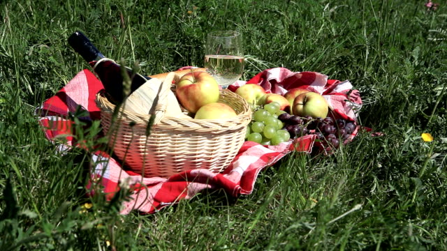 picnic basket on meadow - picnic basket stock videos and b-roll footage