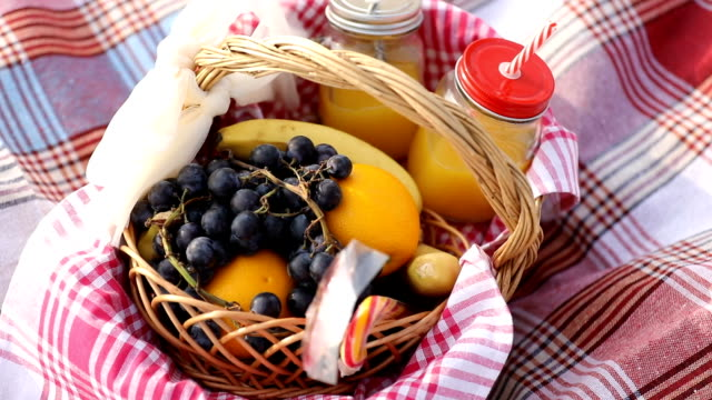 picnic baskets in park - hamper stock videos & royalty-free footage