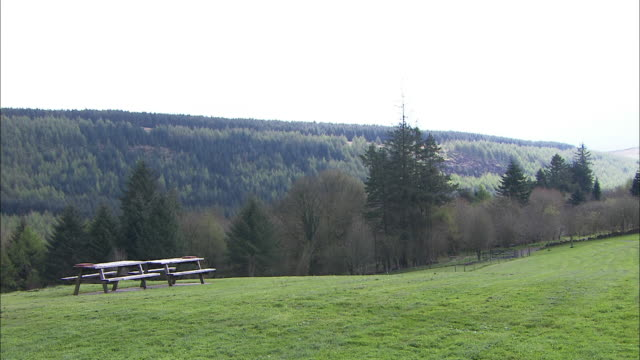 vidéos et rushes de picnic bench in countryside, northern ireland - pique nique