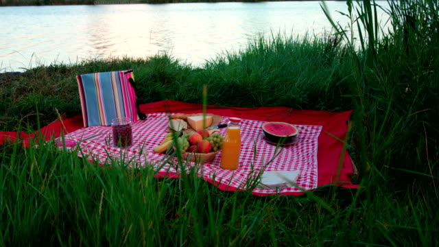 Picnic blanket with food near river or lake