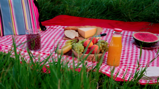picnic blanket with food - picnic basket stock videos & royalty-free footage