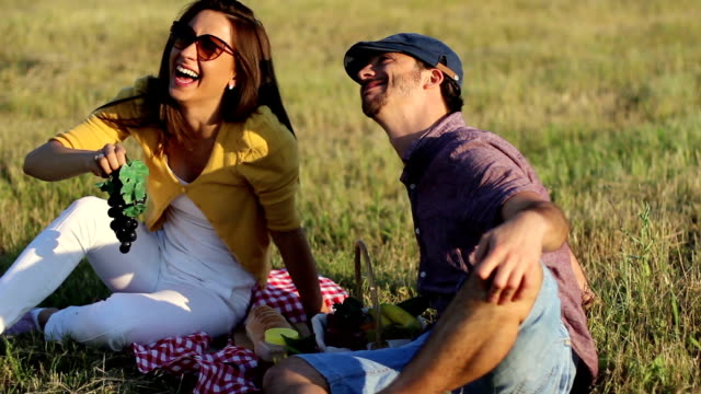 picnic in a meadow - sunny stock videos & royalty-free footage