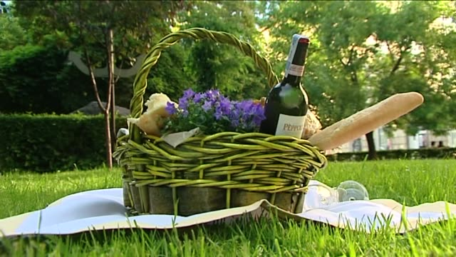 picnic in park - hamper stock videos & royalty-free footage