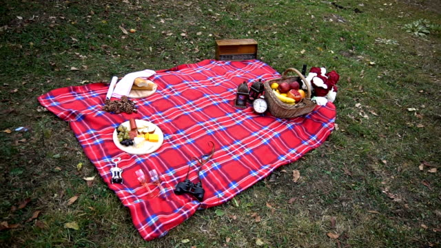 picknick - tischtuch stock-videos und b-roll-filmmaterial