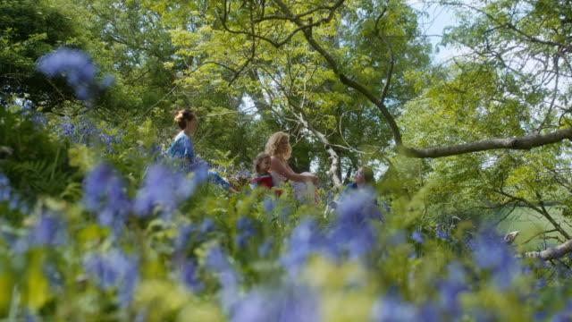 picnic - rack focus stock videos & royalty-free footage