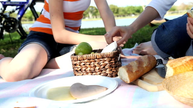 picnic - picknick stock videos and b-roll footage