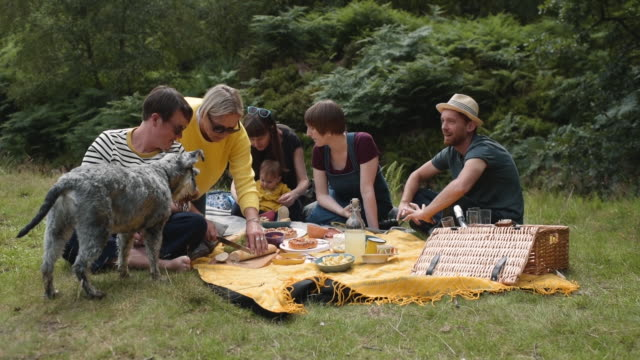 vidéos et rushes de picnic with friends and family - pique nique