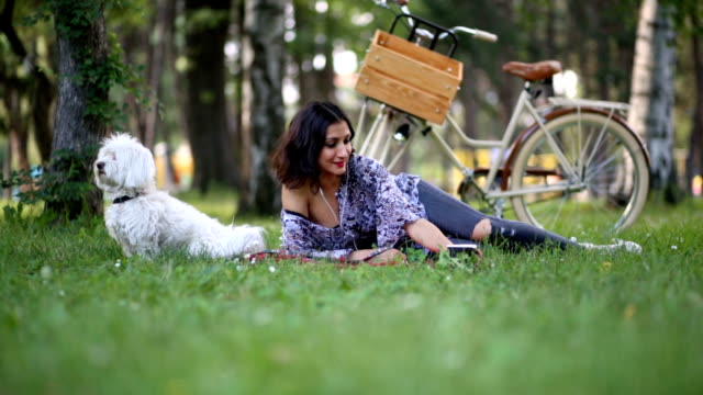 picnics are better with lively pets - maltese dog stock videos and b-roll footage