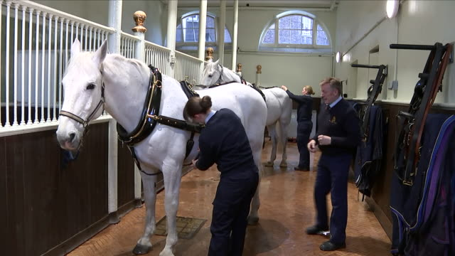 Pictures have been released of the carriage which will be used when Prince Harry and Meghan Markle marry later this month Interviews with Colonel...
