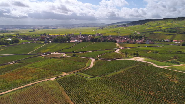 picturesque french village and vineyards - cultivated land stock videos & royalty-free footage