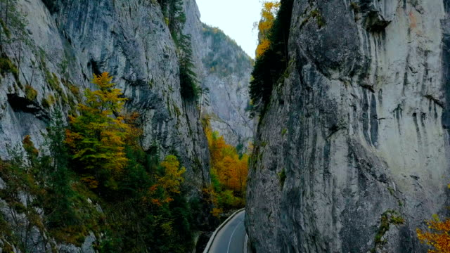 picturesque narrow road between two wooded rocks in bicaz. - romania stock videos and b-roll footage