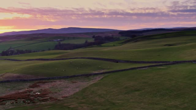 Picturesque Yorkshire Farmland at Sunset - Drone Shot