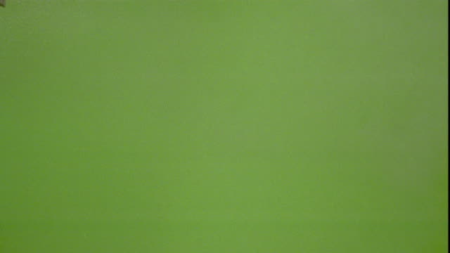 vídeos de stock e filmes b-roll de a piece of ash blows sideways in a green space. - cinza