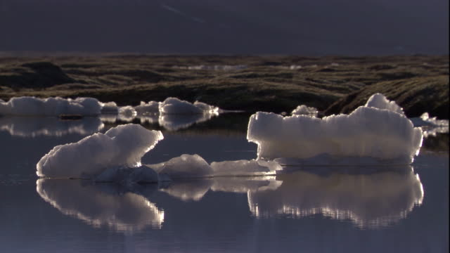 pieces of ice float in water on the tundra. available in hd - hd format stock videos & royalty-free footage