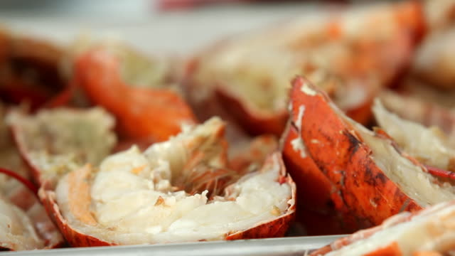pieces of lobsters ready to be cooked  - lobster stock videos & royalty-free footage