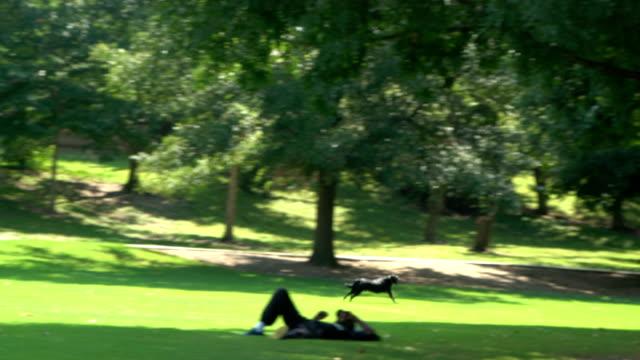 piedmont park, atlanta, ga. - atlanta georgia stock videos & royalty-free footage