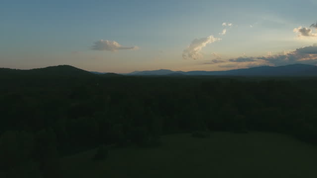 piedmont vineyard in june - appalachian mountains stock videos & royalty-free footage