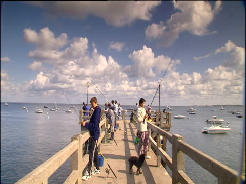 Pier with young people fishing on either side with black dog near feet boats moored further out to sea under soft white clouds in blue sky Arcachon France