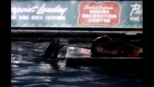 1965 pierpoint landing - long beach california stock videos & royalty-free footage